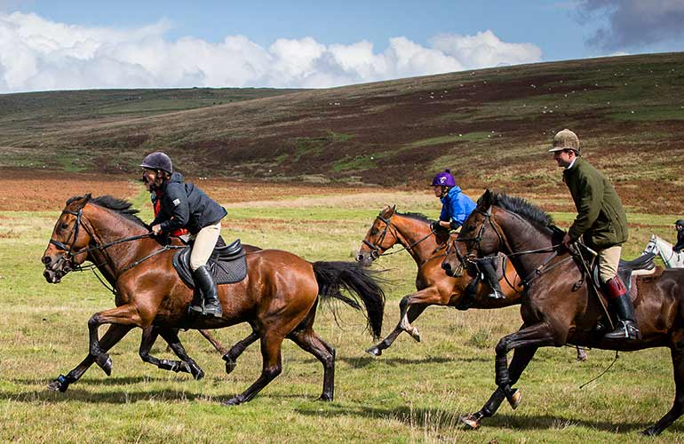 Horses riding across Dartmoor